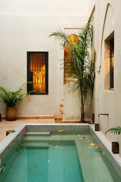 ▷ 1001 + Ideas of small pools for your patio can find Pools and more on our website.▷ 1001 + Ideas of small pools for your patio Amazing Swimming Pools, Small Swimming Pools, Small Backyard Pools, Backyard Pool Designs, Small Pools, Swimming Pools Backyard, Pool Landscaping, Mini Pool, Ideas De Piscina