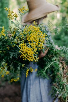 yellow farmhouse blooms