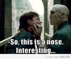 i think my favorite thing about voldemort is that he doesn't have a nose.......i really don't know why, to me it's just so darn hilarious!!!! I actually giggles