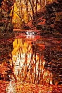 Autumn Stream - Baraboo, Wisconsin