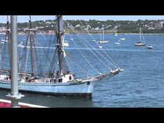 Tall Ships Parade of Sail in Halifax Harbour, Nova Scotia. July Viewpoint from rooftop of Farmer's Market. Tall Ships, Nova Scotia, Sailing Ships, Boat, Dinghy, Boats