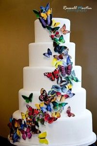 Ms. Debbie's Sugar Art cake tasting with The Event Divas. Each butterfly is hand painted & made of sugar!!!