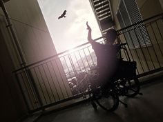 tadaa - lone.craftsman's photo I want to be a bird