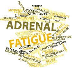 Image result for adrenal fatigue