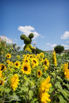 Disney World - Epcot's Flower and Garden Festival!