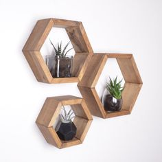This listing is for a set of 3 Hexagon Honeycomb Shelves. These six-sided hexagon shelves will attract attention to any wall in your house or apartment. You can display pictures, plants, or mementos on an individual shelf or you can connect multiple shelves to make interesting geometric designs. Each one of these handmade shelves are assembled with extreme care and undergo an extensive staining/finishing process. This way you can have a timeless, rustic addition to your home decor. This...