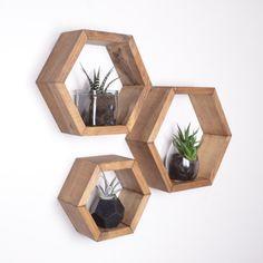 3 estantes de hexágono panal estantes estantes geodésica