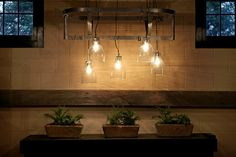 Light from pot rack and bell jars
