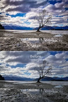 Using our Travel Warm Preset for the famous Wanaka Tree.