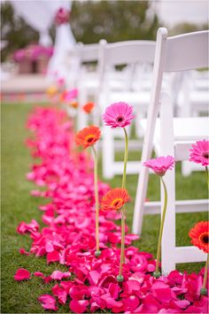 Gerber daisies standing down the aisle with bright pink petals. Perfect spring ceremony decor Photos by Drew Brashler Photography