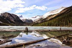Side trail near Paget Peak Yoho National Park British Columbia [3888X2592] [OC] #reddit