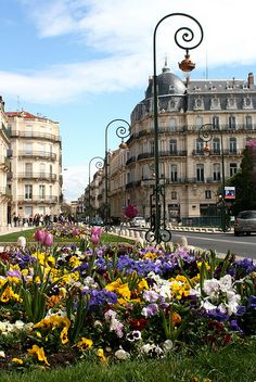 #Springtime in #Montpellier, #France. Get some great trip ideas and start planning your next trip! See More: RoutePerfect.com