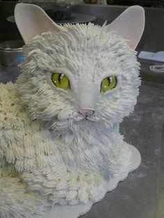 cat cake  <3