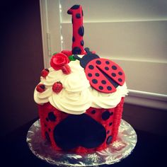 Ladybug themed Happy Birthday Smash Cake