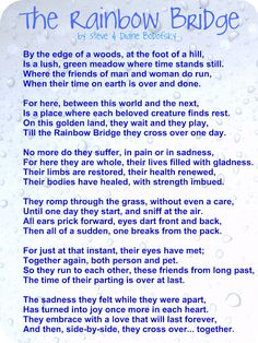 I love this poem!!!  I really do believe one day we will see our pets again.