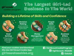 55 Best Girl Scout Journey Amaze images  1747e96503e3