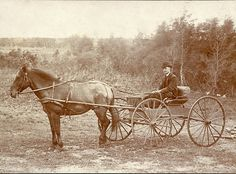 A 19th century cabinet card of a vicar driving his horse and wagon