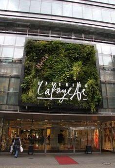 Galeries Lafayette, Berlin, Vertical Garden by Patrick Blanc Retail Facade, Shop Facade, Vertical Garden Design, Garden Landscape Design, Coffee Shop Design, Cafe Design, Logo Verde, Nightclub Design, Green Facade
