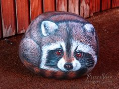 Racoon hand painted on a large stone by Ernestina Gallina