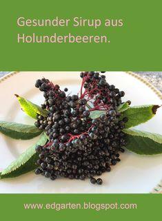 Holunder ist schon seit vielen Jahrhunderten als Heilpflanze bekannt und wurde früher als natürliche Apotheke im Garten angepflanzt. #edgarten #gartenblog #holunder Fitness Motivation, Gardening, Fruit, Food, Abs, Medicinal Plants, Apothecary, Lawn And Garden, Fit Motivation
