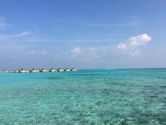 Maldives for ever noel 2014