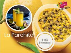 """¿Quién no ha degustado un delicioso jugo de parchita? (o como la llaman en otros países """"fruta de la pasión"""" o """"maracuyá""""), ¿quién no ha disfrutado de una delicioso mousse o pie de parchita?, pero ¿sabemos los beneficios que esta fruta nos proporciona?, pues hoy te los contamos aquí. Esta fruta es rica en antioxidantes, vitaminas del complejo """"B"""", calcio, hierro, fósforo, sodio y potasio. Ofrece aun buenas dosis de vitamina """"A"""" y """"C"""" y mucha fibra soluble. Contienen grandes cantidades de fibra.  Hummus, Mousse, Dinners, Ethnic Recipes, Food, Vitamins, Fiber, Juices, Iron"""