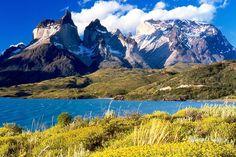 Chile sorprende aumentando en 38, 5% sus áreas protegidas  Medio Ambiente  31 Ene 2018 - 10:06 AM  Redacción VIVIR  La presidenta Michelle Bachelet firmó la creación de una red de parques en la Patagonia que tienen el tamaño de Suiza. La hazaña fue posible gracias a donación de una familia. -- La presidenta Michelle Bachelet firmó la creación de una red de parques en la Patagonia que tienen el tamaño de Suiza. La hazaña fue posible gracias a donación de una familia.