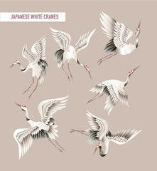 Japanese white crane in batik style. Vector illustration.