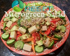 Ultimate Reset Microgreen Salad~ View my blog for my results thus far, and for weekly recipes! :)