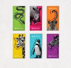 zoo brochure graphic design - Google Search
