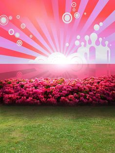 Find More Background Information about LIFE MAGIC BOX Studio Backdrop Vinyl Background Studio Photo Pink Flowers Sea CMS 1815,High Quality studio backdrop,China vinyl background Suppliers, Cheap backdrop vinyl from A-Heaven Fashion Gifts on Aliexpress.com