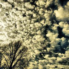 Sky in dexter mo
