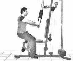 ejercicios con maquinas por zona y tipo