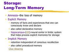 what is long term memory?  Visit us on goimprovememory.com  Via  google images  #memory #memorys #memorylane #memorybox #memoryfoam #memories #memoryloss #improvememory #memoryday #memoryhelp #memorybook