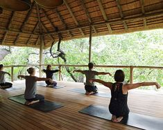 After a morning packed with superb wildlife viewing and cuisine that you just can't say no to. our daily, inclusive yoga class is the perfect activity to get the blood flowing Stone Massage, Alternative Treatments, Deep Tissue, Spa Treatments, Reflexology, Natural Healing, Reiki, Aromatherapy, Pergola