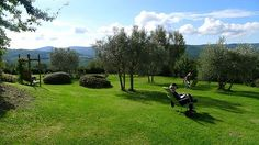 Plein air painting in Tuscany at Villa le Barone
