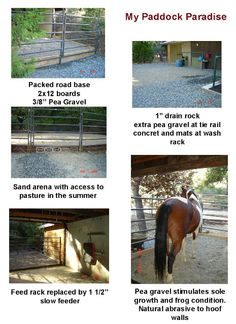 paddock paradise - in our barn we bed stalls with pea gravel instead of shavings