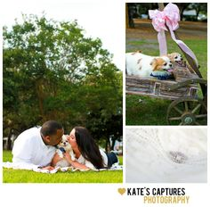 Downtown Pensacola Engagement Session | Chihuahuas | Kate's Captures Photography 2013
