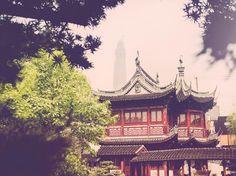 London in Shanghai | Burberry