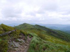 Halicz_Przełęcz Goprowców_Tarnica_Bieszczady_Poland Poland, Mountains, Travel, Viajes, Destinations, Traveling, Trips, Bergen