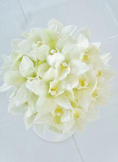 #novarese#vressetrose #wedding #white #round #bouquet #clutchbouquet #natural#flower #bridal#kitayamamonolith#北山モノリス#ノバレーゼ#ブレスエットロゼ#ウエディング# ホワイト#グリーン#シンプル #クラッチ# ブーケ# ナチュラル#小花#ナチュラル#ブライダル#結婚式