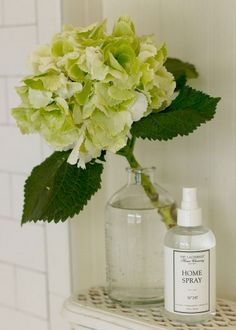 We love our homes to smell clean and fresh—from walking in the door to snuggling into bed. Ahhh. This nontoxic formula with antibacterial properties adds scent while removing odor. Spray to freshen kitchens, bedrooms, living areas, and bathrooms. Ideal for upholstery, drapery, carpets, bedding, and any items shared with furry pets.