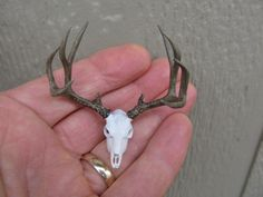 Antlers and skull mule deer miniature trophy dollhouse accent decor. $33.00, via Etsy.