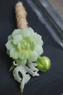 ...succulent boutonnieres...by the clay pot.