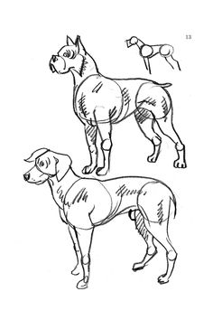 Have you ever wanted to draw a really cute cartoon dog cat cow welcome to dover publications how to draw dogs cats and horses ccuart Gallery