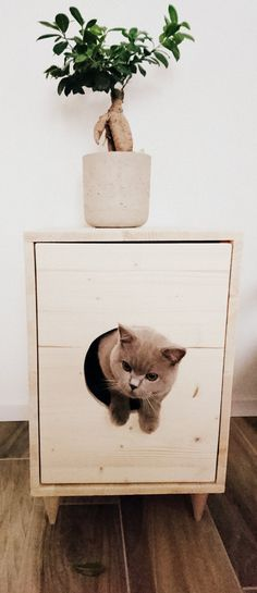 Cat Litter Box Cover Pet Furniture Cat House Modern Litter