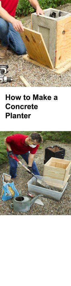 Learn How to Make a Concrete Planter