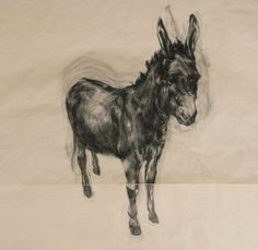 Nicola Hicks, Donkey, carboncino, 190 x 268 cm, 2005 Donkey Drawing, Line Drawing Tattoos, Exquisite Corpse, Animal Sculptures, Life Drawing, Art Fair, Contemporary Paintings, Artist At Work, Creative Art