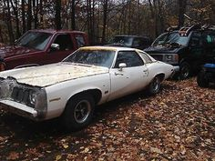 Pontiac : Grand Am original 1973 PONTIAC GRAND AM LOW MILEAGE ALL ORIGINAL CAR - http://www.legendaryfind.com/carsforsale/pontiac-grand-am-original-1973-pontiac-grand-am-low-mileage-all-original-car/