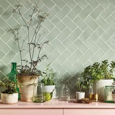 Pinks and greens at Fired Earth. Seagreen wall tiles with pale pink shelving. Tiles, Kitchen Remodel, Green Tile Backsplash, Pink Kitchen, Fired Earth, Green Tile, Kitchen Tiles Backsplash, Kitchen Renovation, Green Kitchen Backsplash